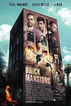 BRICK MANSION (2013)