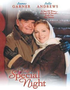 ONE SPECIAL NIGHT (1999)